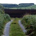 Bog, Road, Roscommon